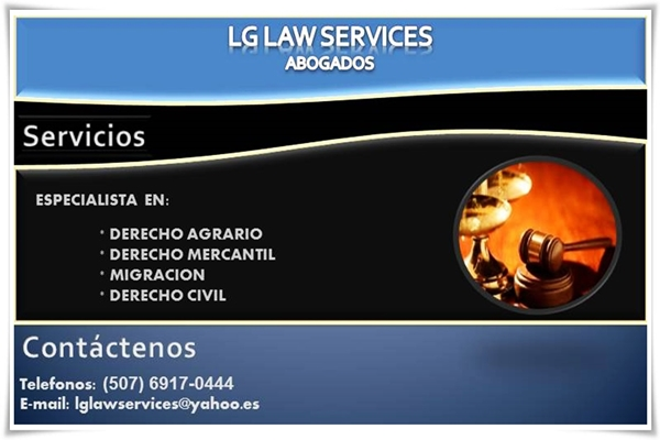 LG LAW SERVICES